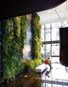 green wall.