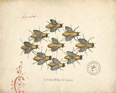≗ The Bee's Reverie ≗ antique bee print