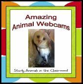 Awesome livebinder anim webcam