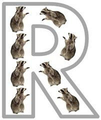 Letter Rr / Raccoon Printables