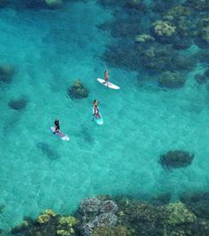 paddle boarding <3 really want to try this.