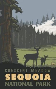 Crescent Meadow, Sequoia NP Poster