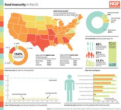 US Food Insecurity rates.