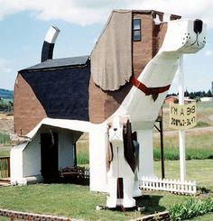 ¿Amante de las mascotas? ¿Te gustaría vivir en una casa como ésta?