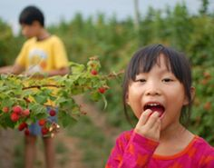 How Pesticides Harm Children's Health and Brains.
