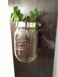 DIY:: Indoor Herb Garden from Mason Jars ! (You can grow mint, basil, cilantro, etc and easily switch out herbs from the jars.) Full photo tutorial