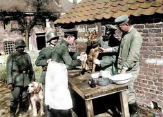 German dog hospital, 1915