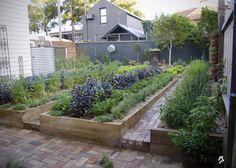 Chiswick Restaurant Vegetable Garden