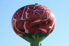 """Rosemont IL """"Rose"""" Water Tower"""