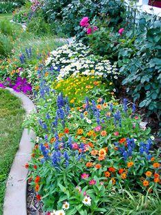 on growing flowers