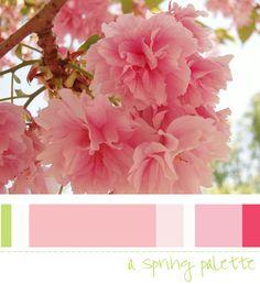 color analysi, spring palett, color luv, season color, pink, light spring, color scheme, color inspir