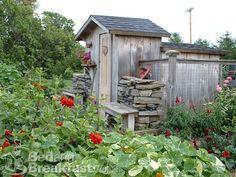 Outhouse chicken coop, vegetables garden, greenhous, garden alon