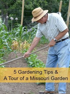 5 Gardening Tips and a Tour of a 7500 square foot Missouri Garden!