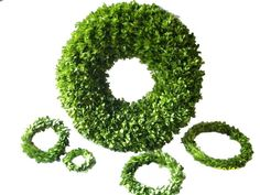 Preserving Boxwood. DIY Preserved Boxwood Wreath. The technique uses glycerin and takes 3 weeks. http://www.flowers-magzine.com/Preserving_Boxwood_Wreath.