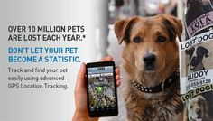 Over 10 million pets are lost each year.  Get Tagg pet GPS.