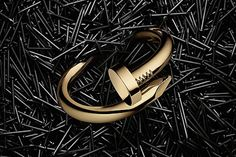 Juste un clou ring by cartier, literally so fabulous, but insanely over priced.