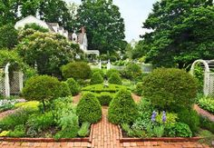 Classic Connecticut Garden--The lovely linchpin in the property's layout is the herb garden, with its boxwood sentinels, 'Palibin' lilac standards, and mirrored lattice arbors imposing symmetry among the gold, silver, and green herbs.