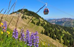 Mt. Rainier Gondola - Crystal Mountain Washington