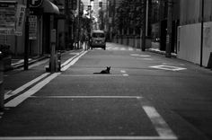 from my fotoblog  東京