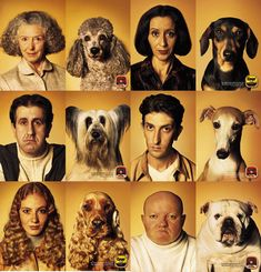dog/owner lookalikes