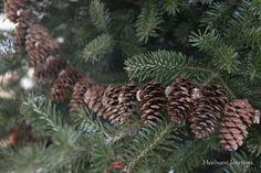 Henhurst Interiors: Christmas in Vermont.. love the small pinecone garland..