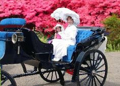 Victorian era carriage fairi godmoth, wrong era, era carriag, victorian era, victorian style, victorian object