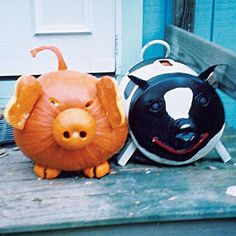 Cool Carved Pumpkin Ideas for Halloween