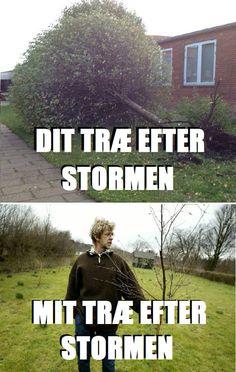læge søren storm struds English