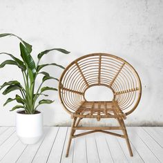 Ring Rattan Chair |