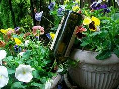 water, wines, plant nanni, outdoor, plants, homemad mama, gardens, wine bottles, bottl plant