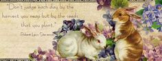 Easter/bunnies facebook cover