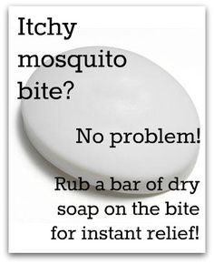 mosquito bite remedy