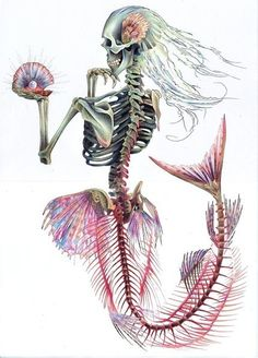 I dont want this but its the first ive seen to be girly and i love the face of a skeleton mermaid Tattoo Ideas, Skull, Mermaid Tails, Mermaid Tattoos, Bone, Art, Sea, A Tattoo, Skeleton