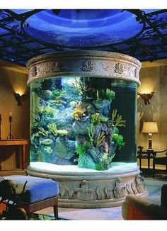 Huge fish tank! Would do something like this in my house but more modern and with exotic tropical fish.