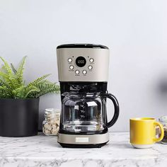Haden Heritage Putty 12-Cup Programmable Coffee Maker + Reviews | Crate and Barrel