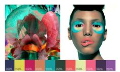 WGSN Colour Direction SS 2014