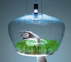 The Glasshouse Lamp by Kristýna Pojerová   Inspir3d