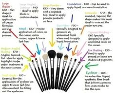 Makeup brush uses
