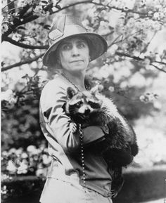 The story of First Lady Grace Coolidge and Rebecca the raccoon. (Follow link for story)