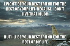 Most Faithful Friend.