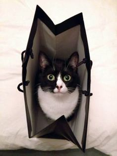 I'm in here!