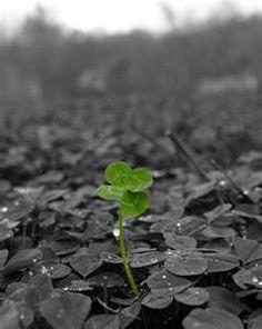 Faith, Hope, Love and Luck