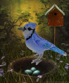 Mini Blue Jay next to a nest and a bird house in the fairy garden.