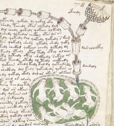 The mysterious Voynich Manuscript has recently been undergoing scientific testing to determine when it was written.  The author of the manuscript wrote it in a language that no one has been able to decipher, has flora and fauna that no-one can really seem to identify in it, Astrological maps and even strange pharmaceutical entries.