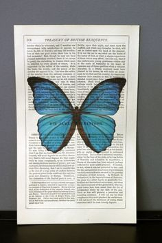 Antique Book Paper Prints - Blue Butterfly - Unframed