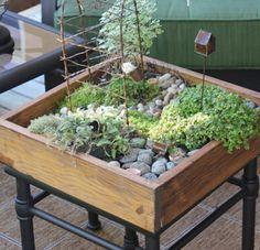 DIY Tabletop Miniature Garden | Shelterness