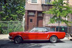 1965+Ford+Mustang2.jpg 1,024×682 pixels