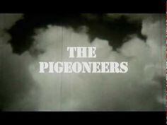 In this debut film, director Alessandro Croseri delivers a stunningly beautiful ode to combat pigeons and their pigeoneers. The documentary follows Col. Clifford Poutre at age 103 during the final year of his life and examines his innovations in the training of homing pigeons for combat missions during World War II.