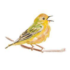 Yellow Bird original water color painting by Elena Romanova