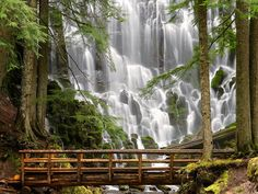 Ramona Falls, Sandy Oregon